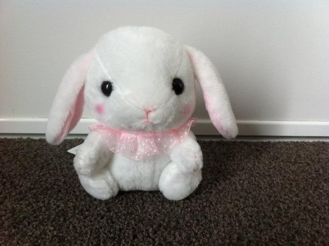 Rabbit 20a