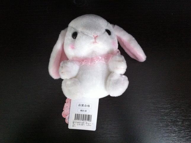 Rabbit 201