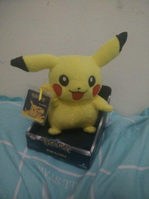 Pikachu kanto plush 1536384241 49f78702