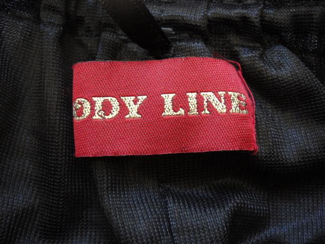 Skirt bodylinepannier3